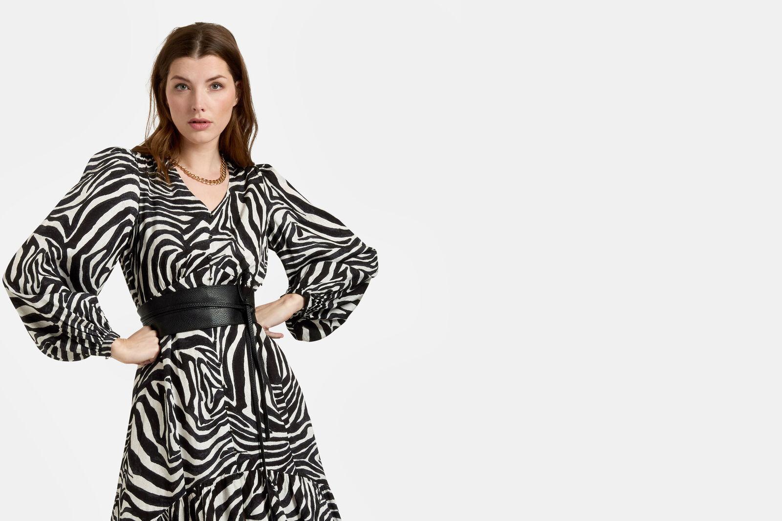 Pippa Zebra Jurk
